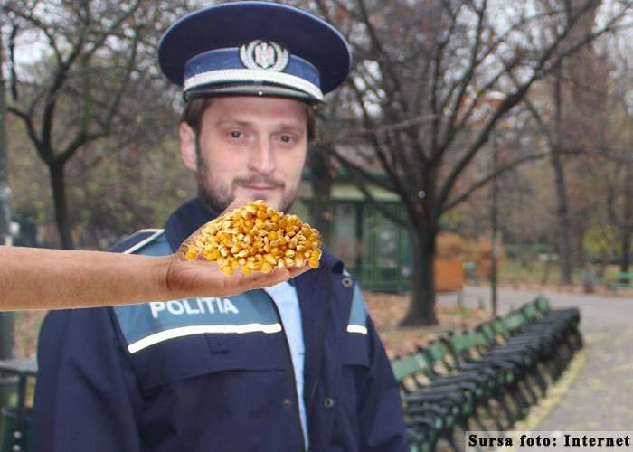 Încă un video compromițător. Polițist, surprins mâncând grăunțe din palma unui interlop