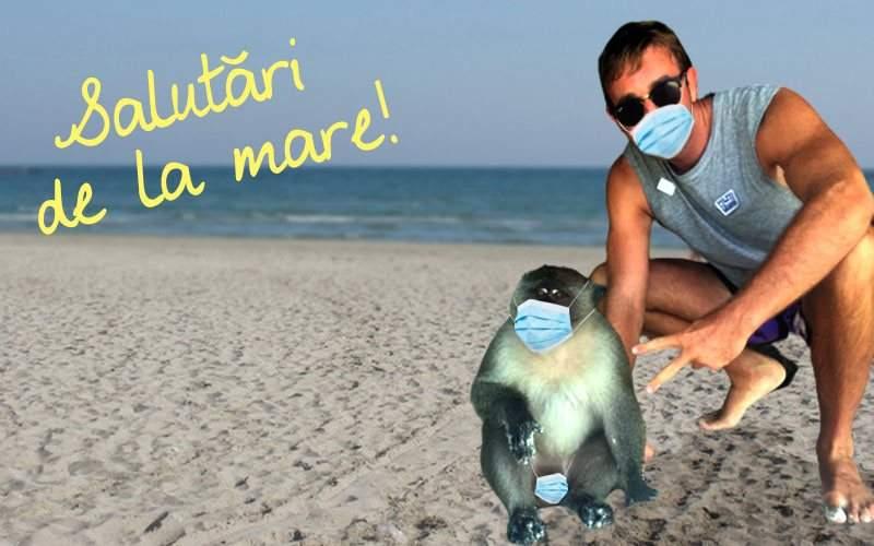 Reguli pe litoral. Dacă te pozezi cu maimuța trebuie să poarte și ea mască