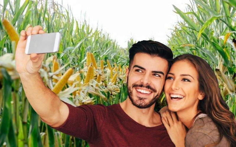 Au apărut influencerii flămânzi, care-și fac selfiuri în lanul de cartofi sau de porumb