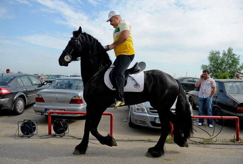 Prima parcare park&ride la Strehaia! Lași mașina și iei calul