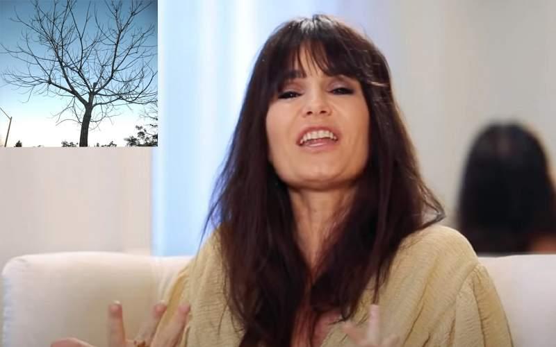 """Dana Budeanu a criticat dur un copac căruia i-au căzut frunzele: """"Fătălăule!"""""""