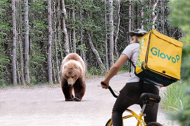 Un urs a comandat pe Glovo și a primit un curier întreg din partea casei