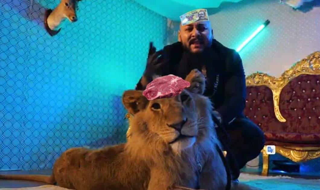 Leul lui Dani Mocanu nu mănâncă decât dacă îi lipești carnea pe frunte