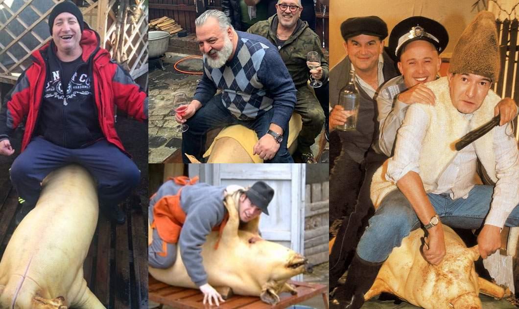 Noi restricţii! După tăiere, porcul poate fi călărit de maximum 20 de persoane