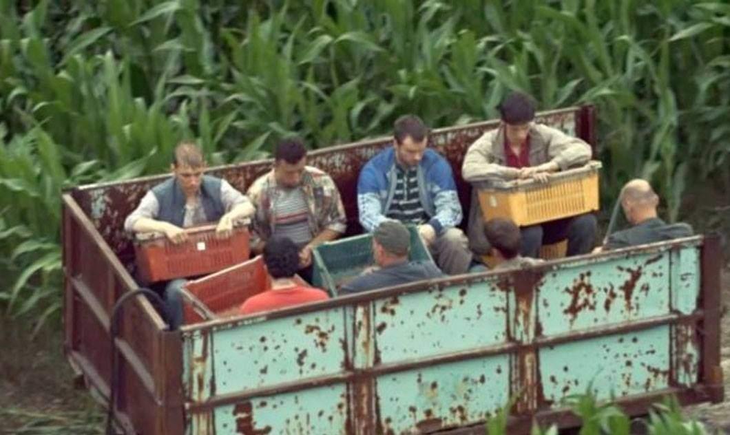 Mii de români puși în lanțuri în fermele din Franța, pe motiv c-ar fi rasiști