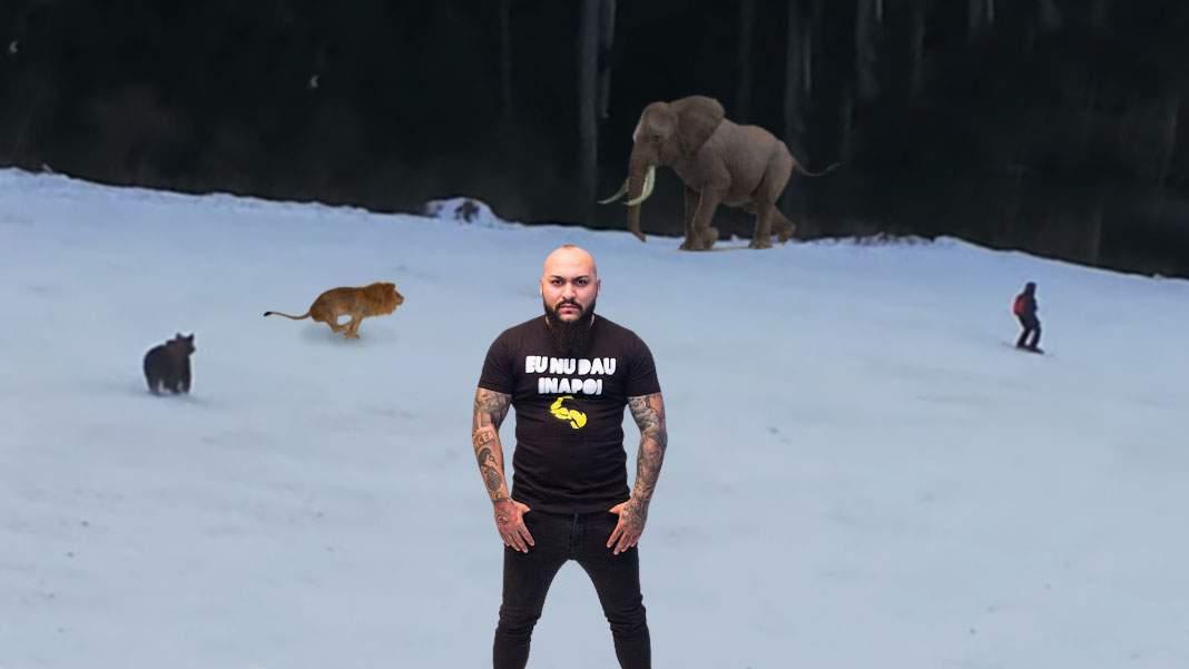 Încă un incident pe pârtie. Un urs a fugărit leul lui Dani Mocanu