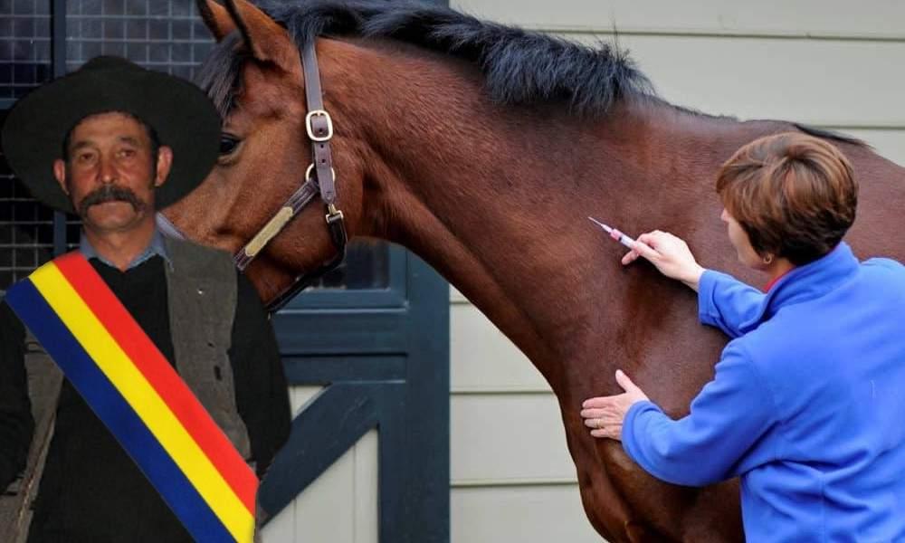 Furie în Strehaia după ce primarul și-a vaccinat caii înaintea populației