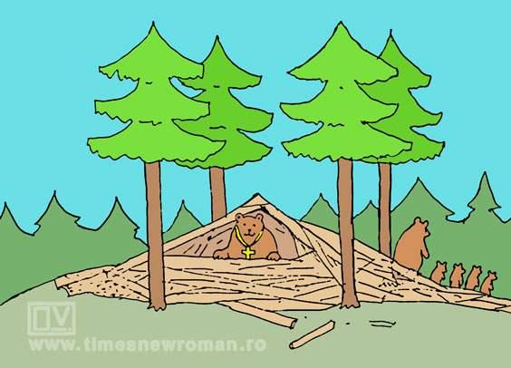 Bârlogul ursului brun