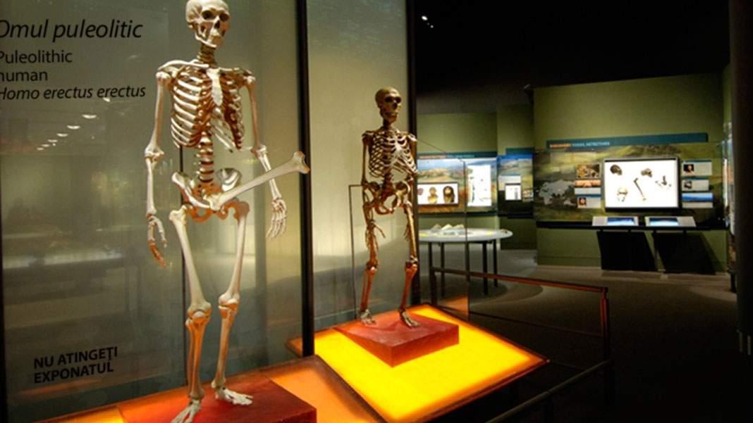 Senzațional! A fost descoperit scheletul bine dotat al unui om din Puleolitic