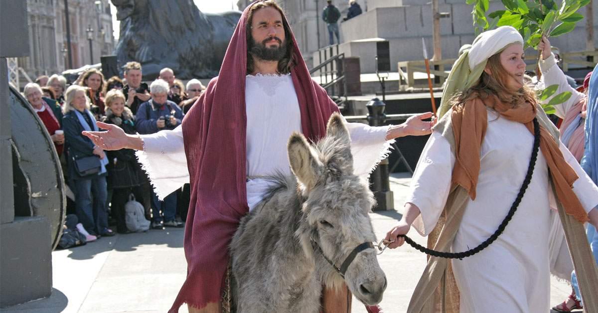Beizadeaua lui Dumnezeu, prinsă cu 200 km/h pe un măgar tunat în Ierusalim
