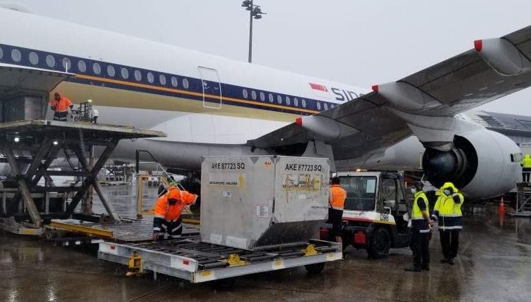 Ghinion, România! 500.000 doze Pfizer au ajuns la Budapesta în loc de București