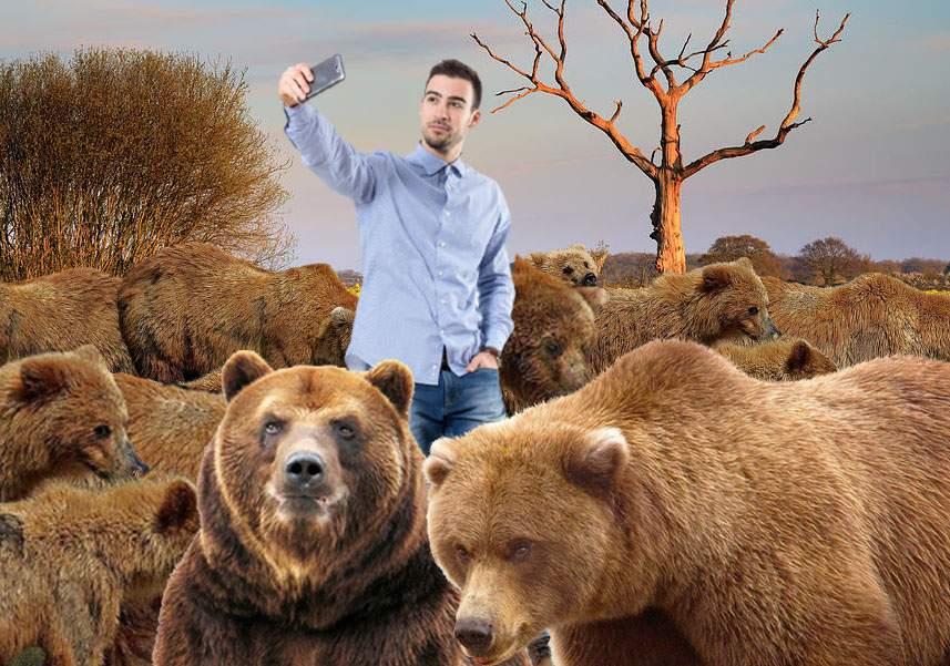 Uită de rapiță! În Harghita sunt la modă selfie-urile în lanul de urși