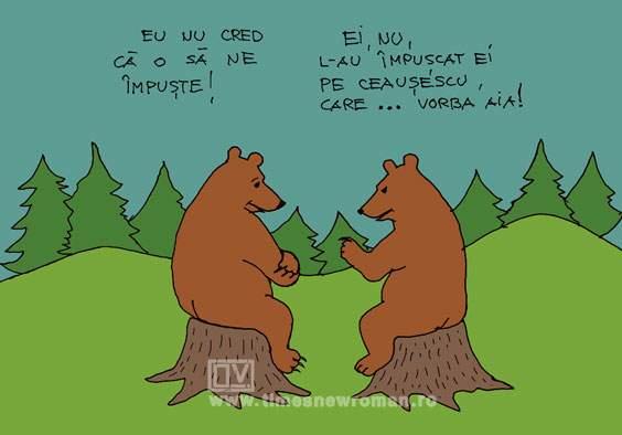 Problema urșilor