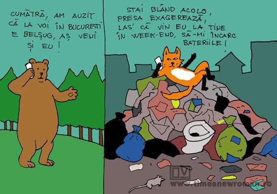 Ursul iarăși păcălit de vulpe