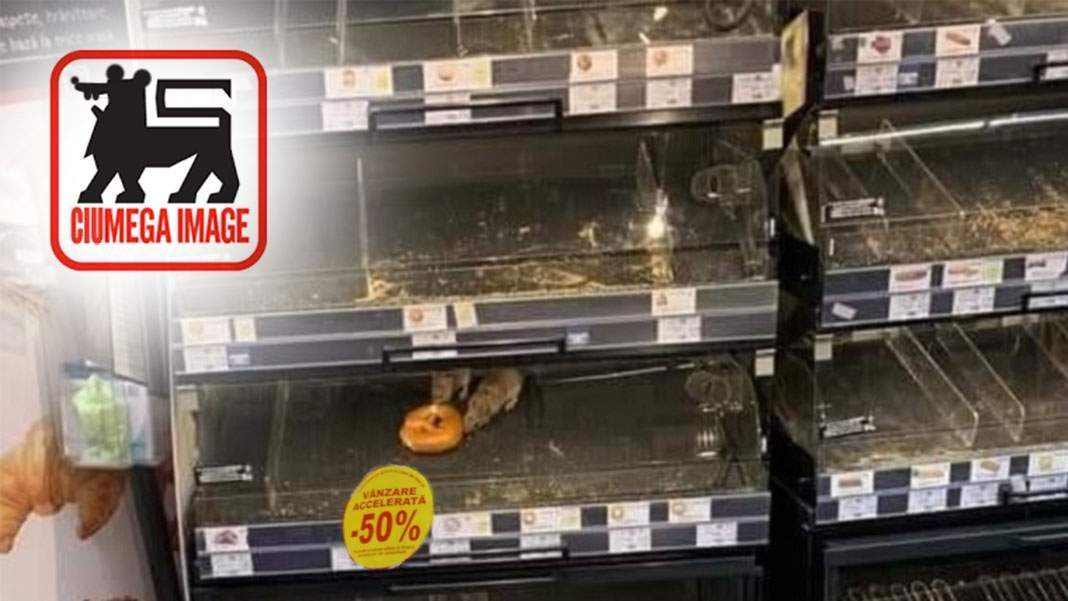 Promoție. Covrigul ronțăit de șobolani, redus cu 50% azi la Mega Image