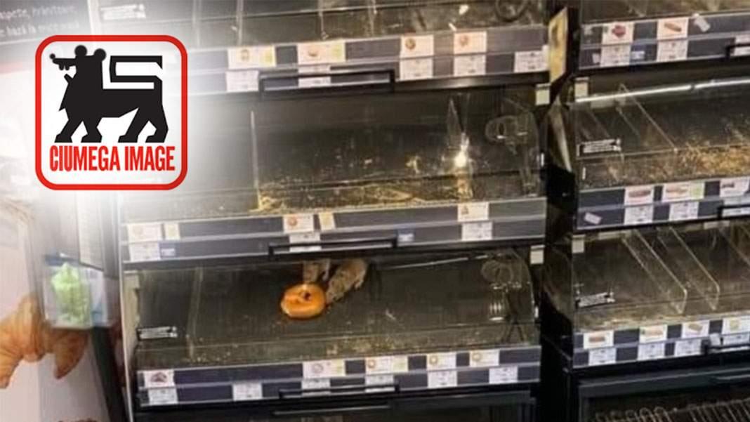 Mega Image devine Ciumega Image după ce șobolanii au adus ciuma în magazine