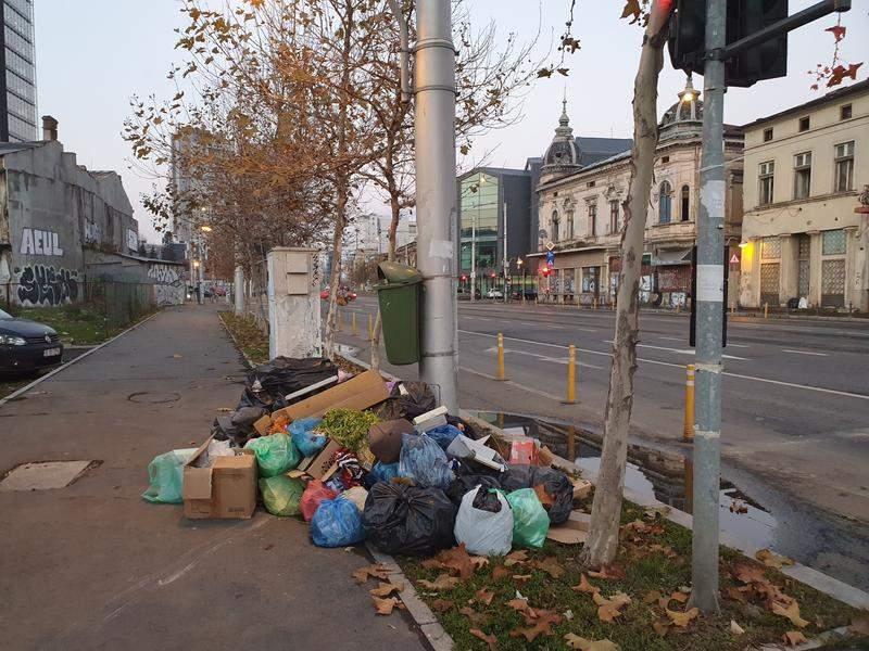 Francezii, oripilaţi de gunoiul din Sector 1: Dacă era unul de-al nostru primar…