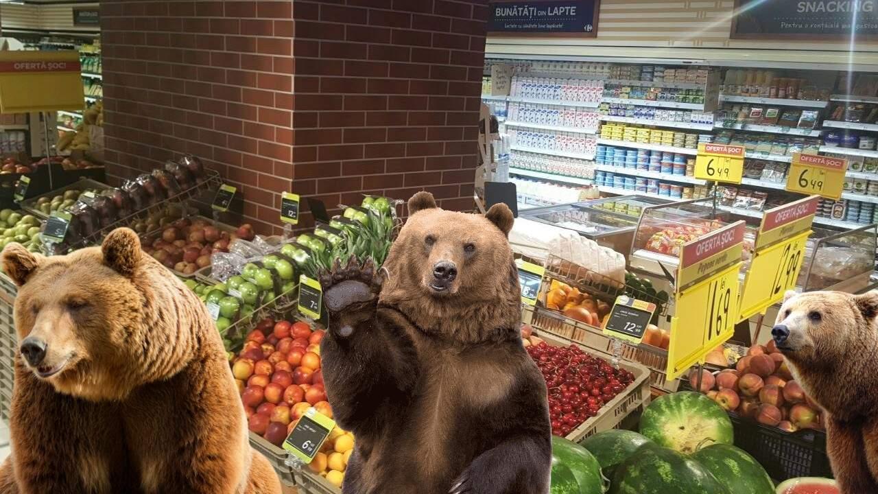 Invazie de urși la un supermarket din Brașov care avea promoție la zmeură