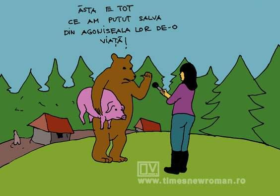 Ursul salvator