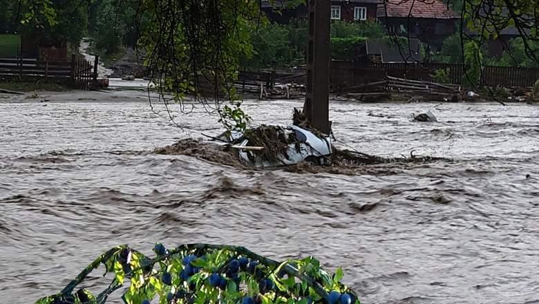Inundațiile au făcut prăpăd în Bihor. A fost pus la pământ UN PRUN!