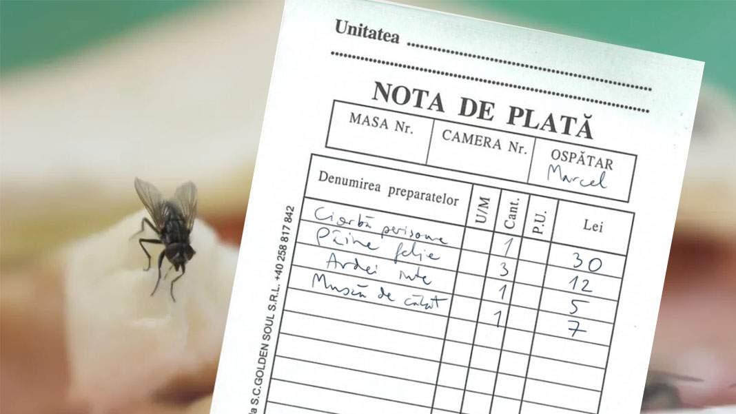 Un turist din Mamaia se plânge că i s-a trecut musca din ciorbă separat pe notă