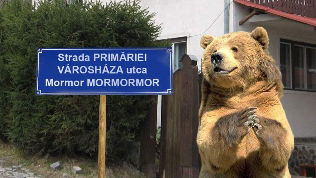 Urşii din Tuşnad cer plăcuţe trilingve, în română, maghiară şi mormăit