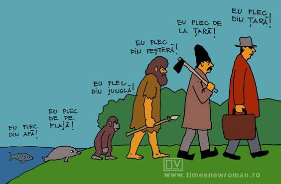 Evoluția românului