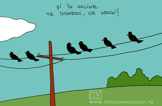Nesimțitul din online