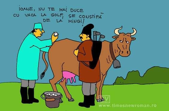 Vaca nebună după golf