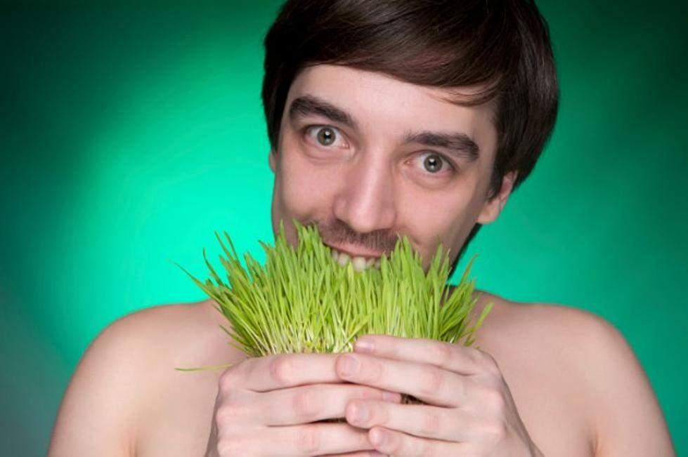 Mai mulți vegani intoxicați după ce au mâncat iarbă din gazon sintetic